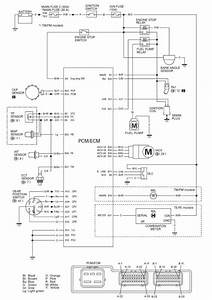 2000 Honda Foreman Headlight Wiring Diagram