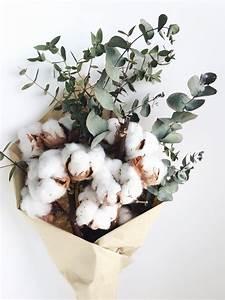 Bouquet Fleur De Coton : dried cotton preserved eucalyptus curious country creations crafty life ~ Teatrodelosmanantiales.com Idées de Décoration