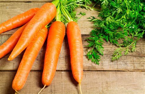 concept cuisine les différentes vertus de la carotte