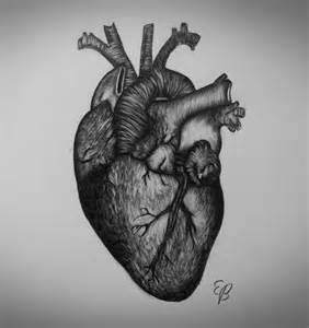 Realistic Heart Drawing