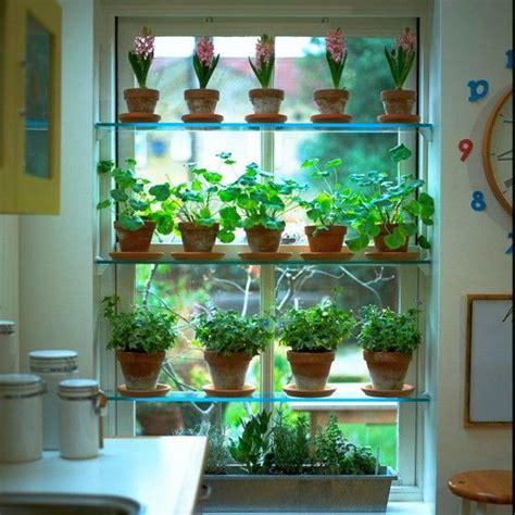 Indoor Window Herb Garden by Window Herb Garden Dwell Amazing