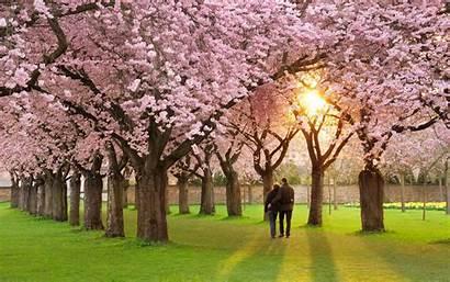 Spring Season Wallpapers Romantic Wao Wallpapertag