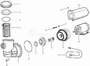 Jacuzzi Clr Pump  50hz  Parts