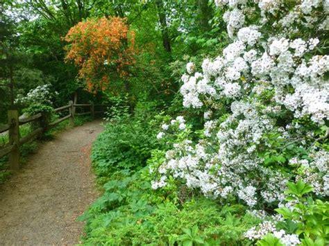 asheville botanical gardens 6 toddler friendly hikes
