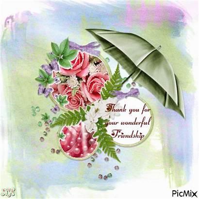 Thank Friendship Wonderful Picmix