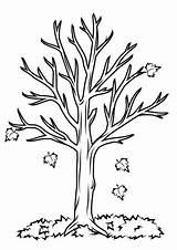 Fall Coloring Tree Pages Printable Categories Version sketch template