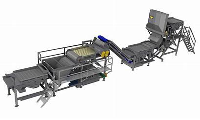 Processing Line Peas Spinach Equipment Vegetable Pollak