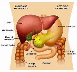 Gallbladder Pain Location Diagram