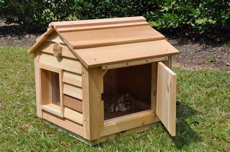 outdoor cat house custom dog cat houses  blythe