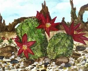 Desert Cactus by Heather Marie
