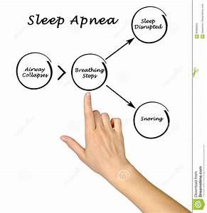 Sleep Apnea Stock Image  Image Of Health  Medical