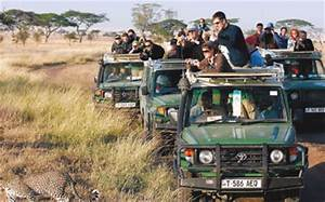 Tanzania tourism up as gold income falls - The East African