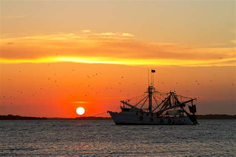 shrimp boat stock  pictures royalty  images