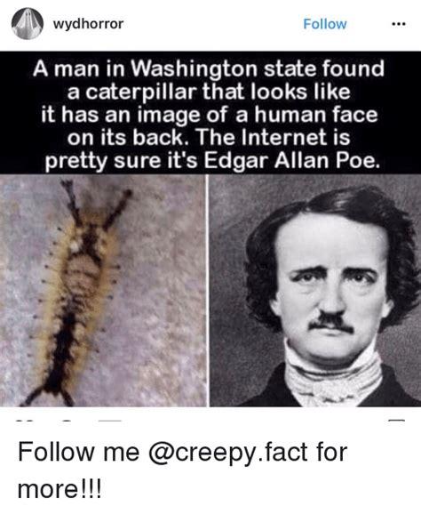 Edgar Allen Poe Meme - funny images of memes of 2017 on sizzle sharked