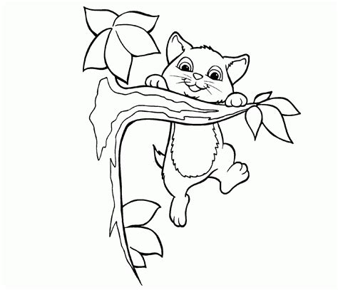 cute house drawing cat coloring pages gif pictures  cats