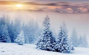 nature, Landscape, Winter, Snow, Mountain, Forest ...