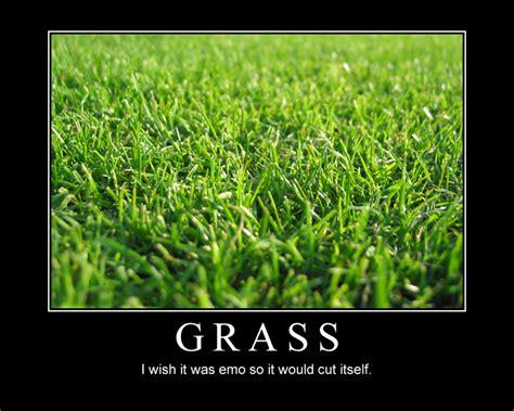 Emo Grass By Voralyn On Deviantart