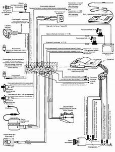 Hornet Car Alarm Wire Diagram