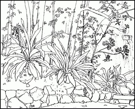 realistic nature coloring pages  getcoloringscom