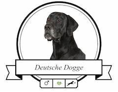 Blutvolumen Berechnen : deutsche dogge krankheiten spezielle ern hrung ~ Themetempest.com Abrechnung
