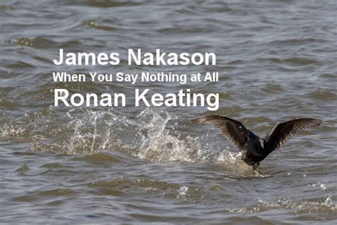 When You Say Nothing At All (cover Version Of Ronan