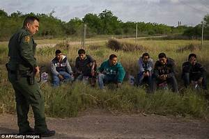 Study finds there are over 22million undocumented ...