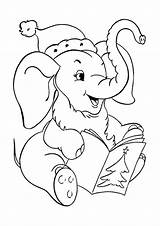 Elephant Coloring Kangaroo Tulamama Flowers Santa sketch template