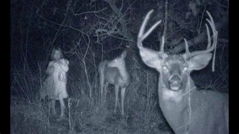 caught  trail camera mysterious weird creepy animals