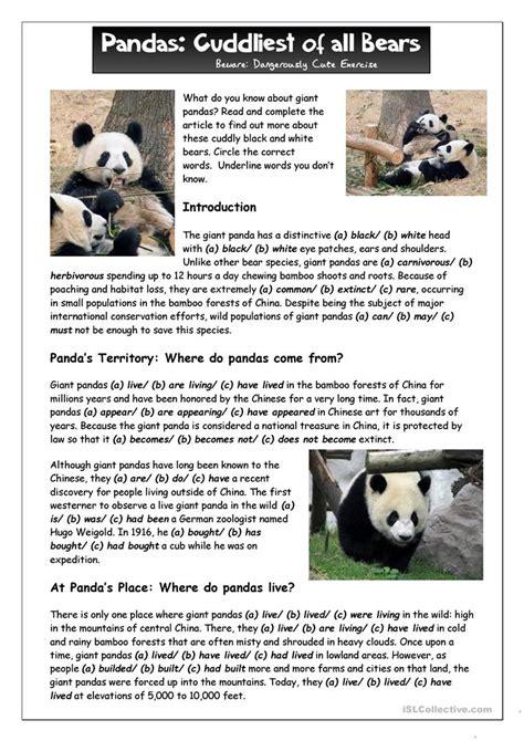 reading       giant pandas