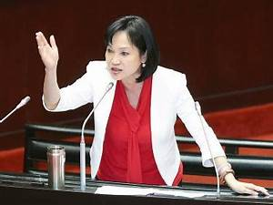 Results called DPP failure, not KMT win - Taipei Times