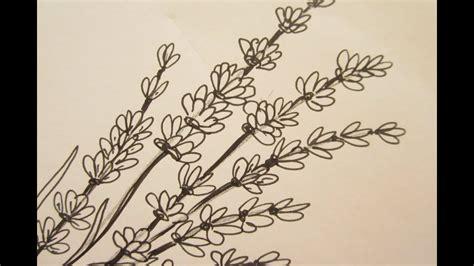 draw flowers draw lavender flowers youtube