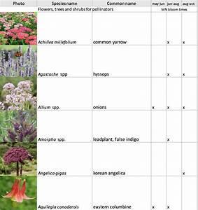 Pollinator, Plant, Lists, And, Habitat, Restoration, Guides