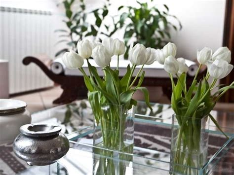 Fiori Per Appartamento by Curare I Fiori In Casa Piante Appartamento Come
