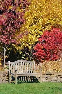 21 best images about North Carolina Arboretum on Pinterest ...