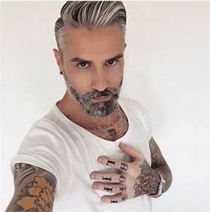 Coupe Homme Cheveux Gris : coiffure homme teinture grise ~ Melissatoandfro.com Idées de Décoration