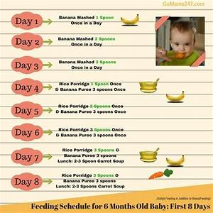 Feeding Schedule Of A 6 Months Old Baby Baby Food Chart