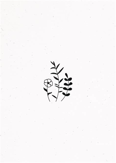 Botanical illustration (With images)   Easy drawings, Cute