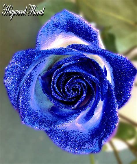 glitter tip roses