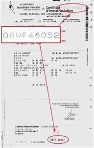 Ou Trouver Les Chevaux Sur Carte Grise : carte grise cyclomoteur de moins de 50 cm3 ~ Gottalentnigeria.com Avis de Voitures