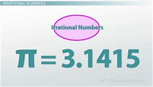 What Are The Different Types Of Numbers