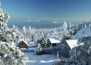 Mt. Leconte Winter Wonderland | Anything Smoky Mountains ...