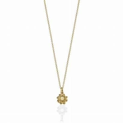 Necklace Charm Protea Jewelry Gold Jewellery Flower