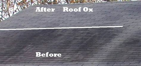 Safe Roof Mold Cleaner And Fungus Removal J And K Roofing Golf Cart Roof Replacement Slate Installation Cincinnati Contractors Red Inn Hazelwood Mo Synthetic Underlayment Reviews Bmw Rack 3 Series Tecta America