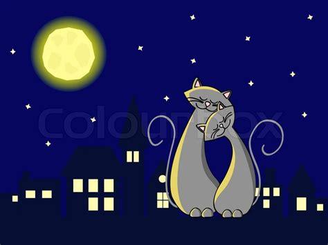 grey cats  love sitting   roof  night stock