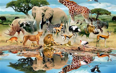 Animals, Animal World, Mural, Trees, Grass, Water