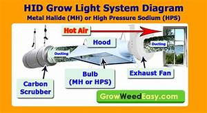 Mh  Hps Grow Light Tutorial  Plus Stealthy  U0026 Cheap Ways To