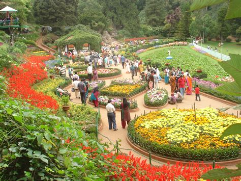 Form 65 For Jammu Kashmir by Cheapest Kashmir Tour With Monks And Monkeys Travels Pvt
