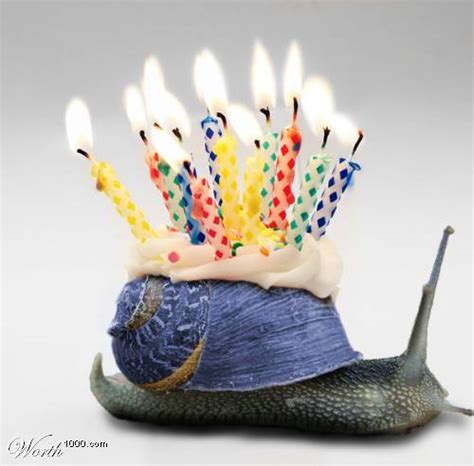 happy birthday snail comments myspace happy birthday snail graphics pimp  profile