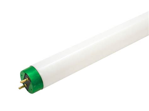 philips 32 watt 48 inch t8 cool white fluorescent bulb