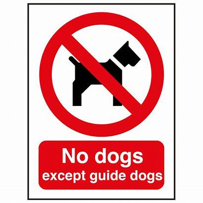 Dogs Sign Guide Except Signs Catersigns